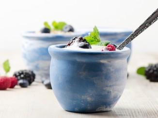 Frozen Yogurt Market to Grow in North America