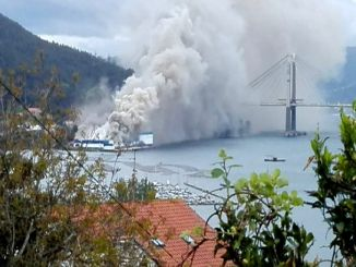 Spanish Frozen Seafood Factory on Fire