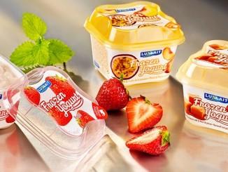 Easysnacking Breaks the Ice For Frozen Yoghurt