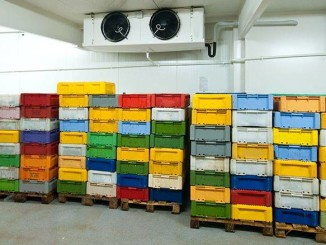 GCCA Report Shows Worldwide Growth in Cold Storage Capacity