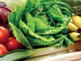Greenyard Foods Doubles Capacity of Frozen Food Unit