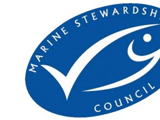 MSC to Finance Fisheries Sustainability Fund