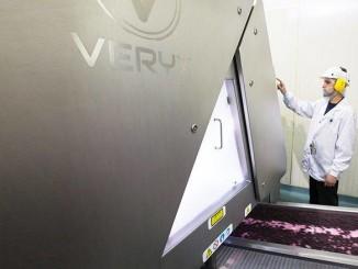 Key Technology: Sorters for Frozen Berries