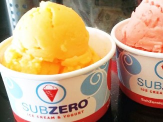 Sub Zero Ice Cream Plans Aggressive Expansion