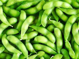 IQF Edamame and Its Increasing Popularity