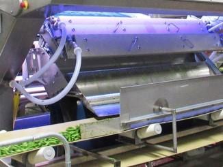 VERYX Digital Sorters for Green Beans