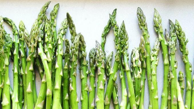 Freezing IQF Asparagus