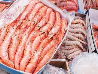 Global Frozen Seafood Market Expands