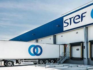 STEF Strengthens European Frozen Food Network