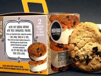 High Road Ice Cream Enters Inc. 5000 Top