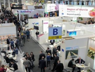 What to Expect from Fruit Logistica's Start-Up Day