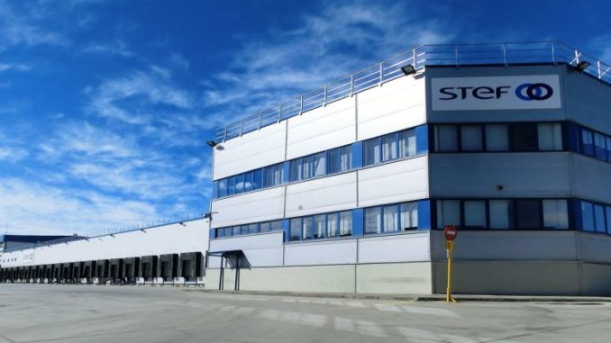 Stef Group