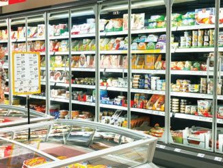 German Frozen Food Market Grew by 30% in the Last 10 Years