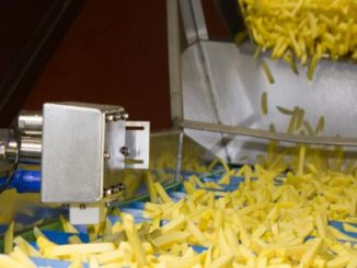 GEA's Callifreeze System Can Improve Frozen French Fry Quality