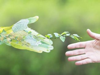 Swedish Conference Focuses on Sustainability in Retail